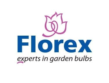 Florex B.V.