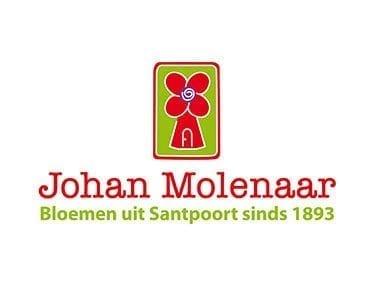 Johan Molenaar