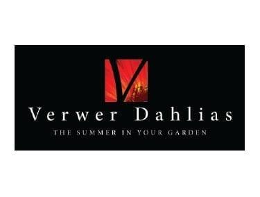 Verwer Dahlia's B.V.