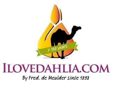 ILoveDahlia.com